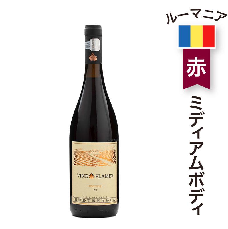 カズチー3袋+赤ワイン(ヴァイン イン フレイム ピノ ノワール 750ml)セット